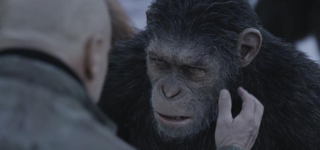 La planète des singes : Suprématie critique avec du recul blogc